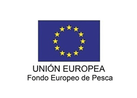 Logo FEP2