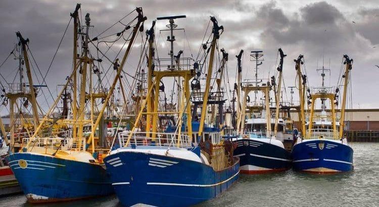 barcos-pesqueros
